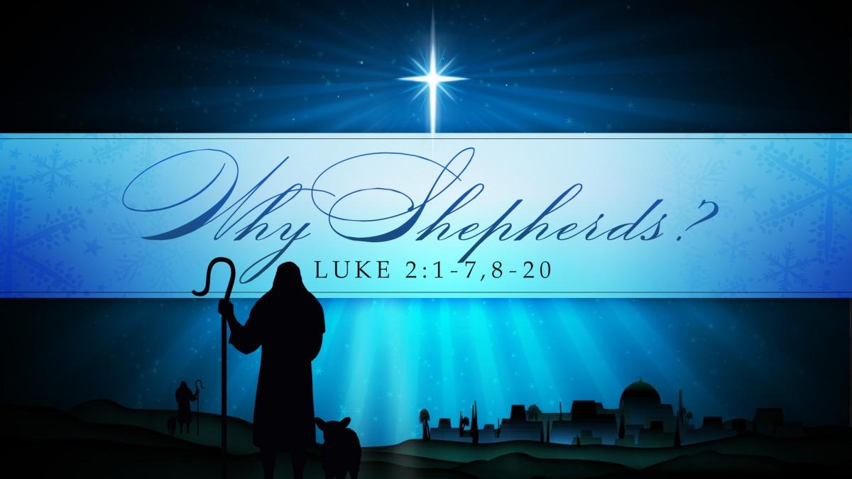 Why Shepherds?