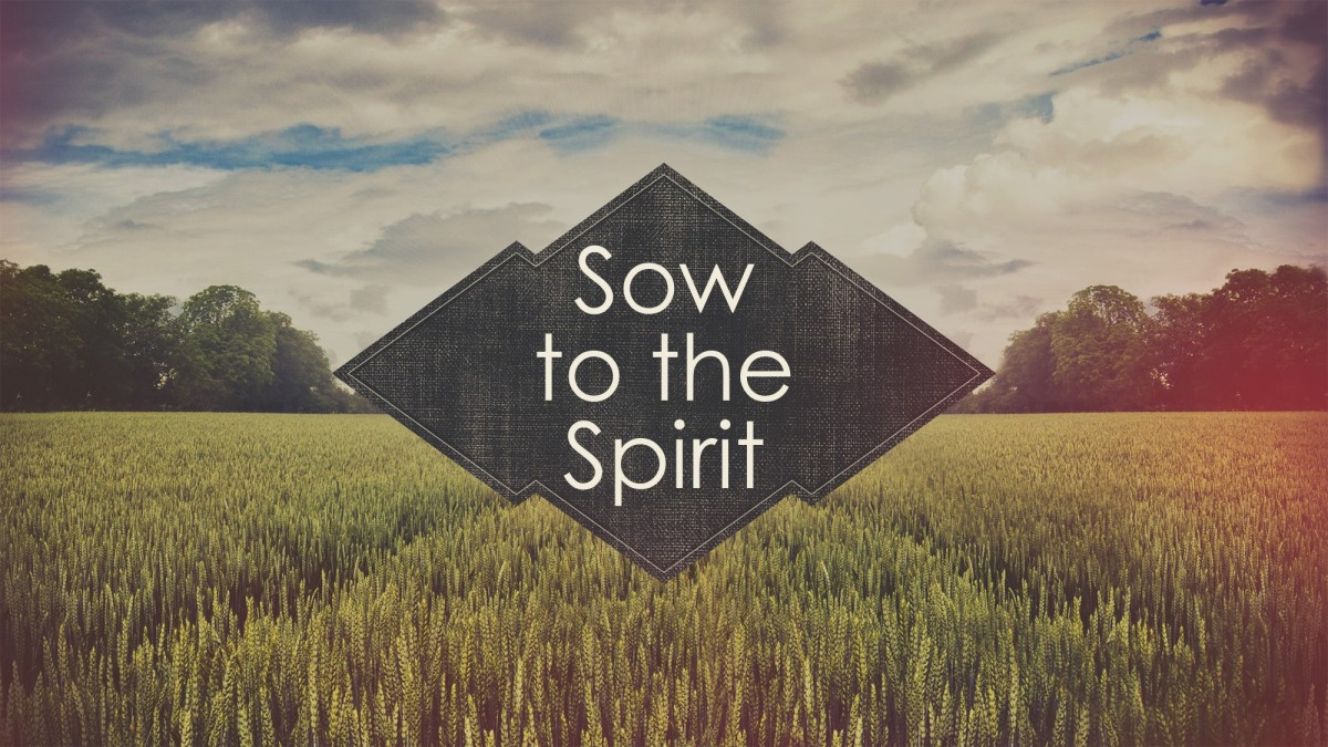 Sow to the Spirit
