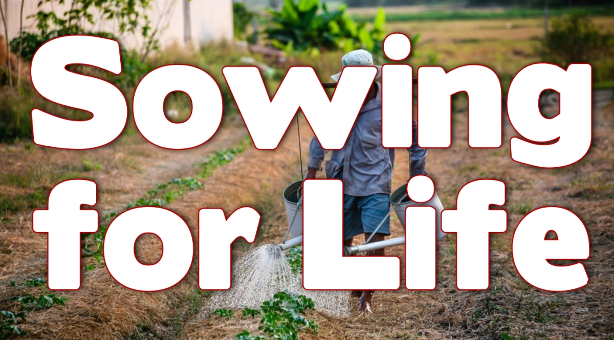 Sowing for Life