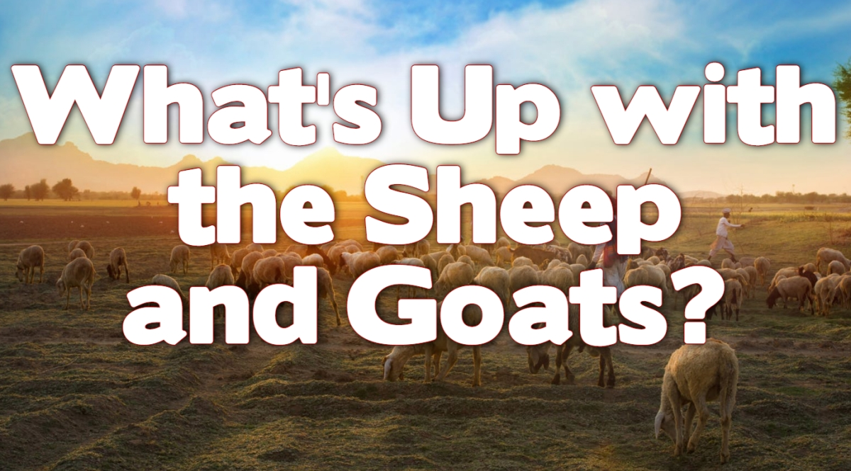What's Up with the Sheep and Goats?