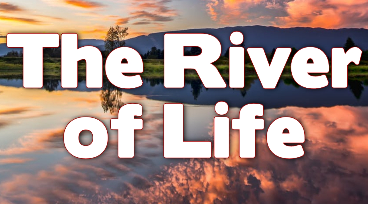The River ofLife