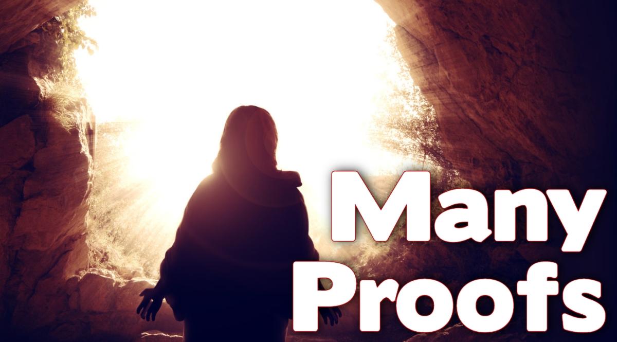 Many Proofs