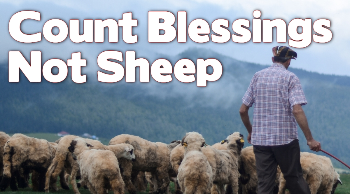 Count Blessings, Not Sheep