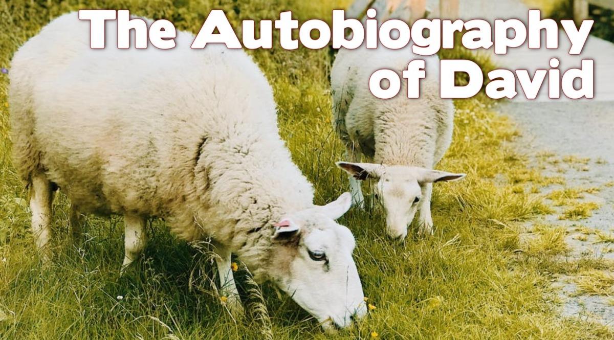 The Autobiography ofDavid