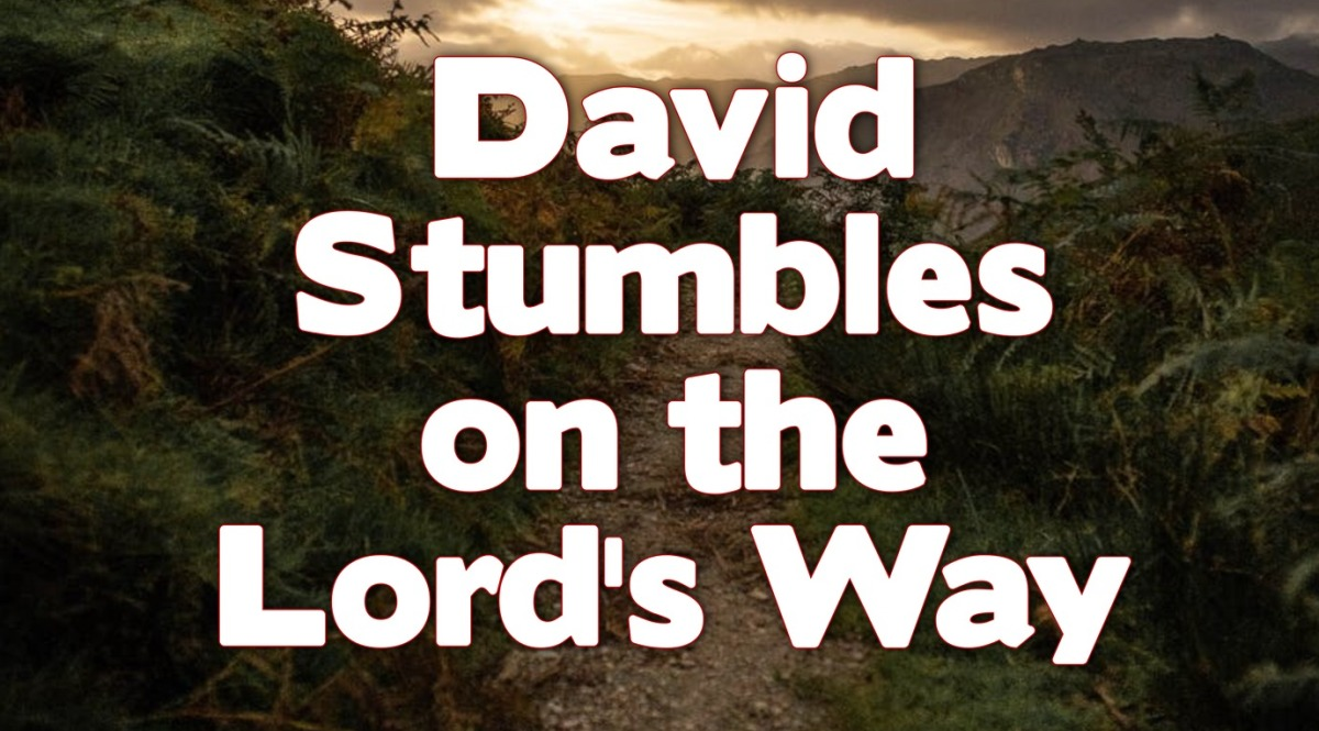 David Stumbles on the Lord'sWay