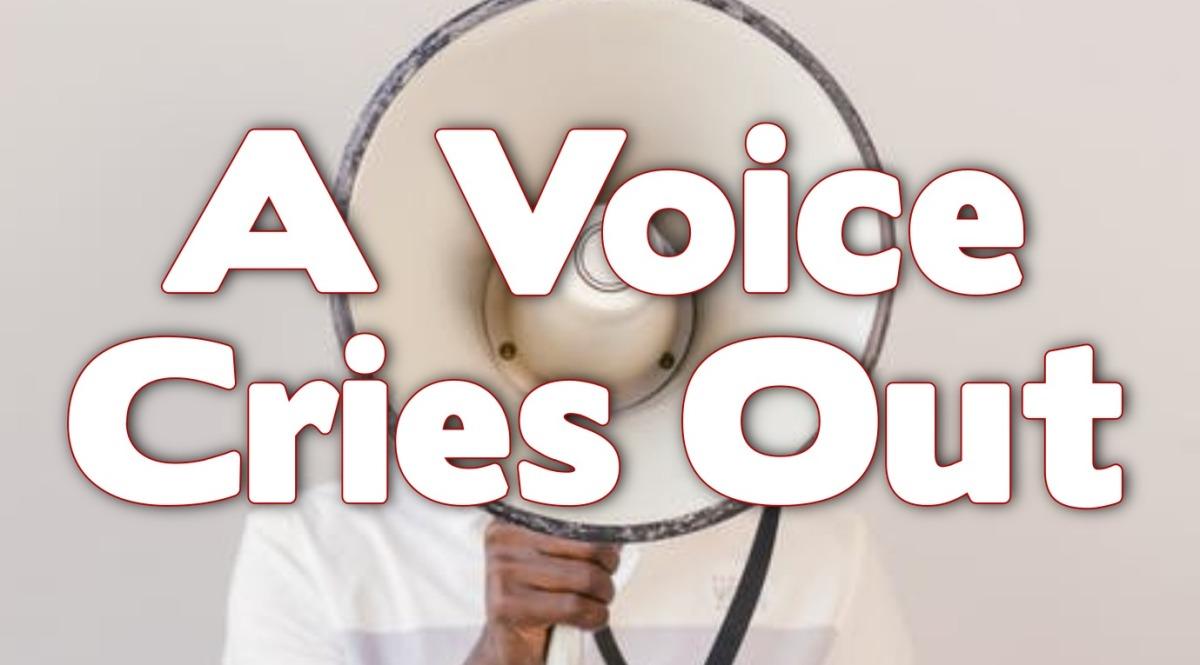 A Voice CriesOut